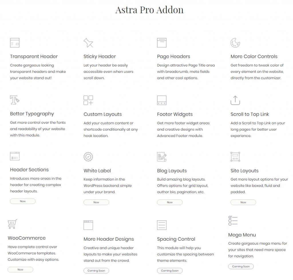 astra pro主题插件