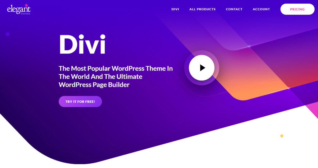 divi wordpress tema
