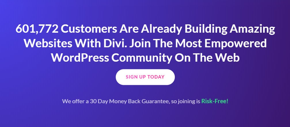 divi website examples
