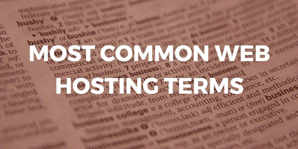 most common web hosting terms infographic