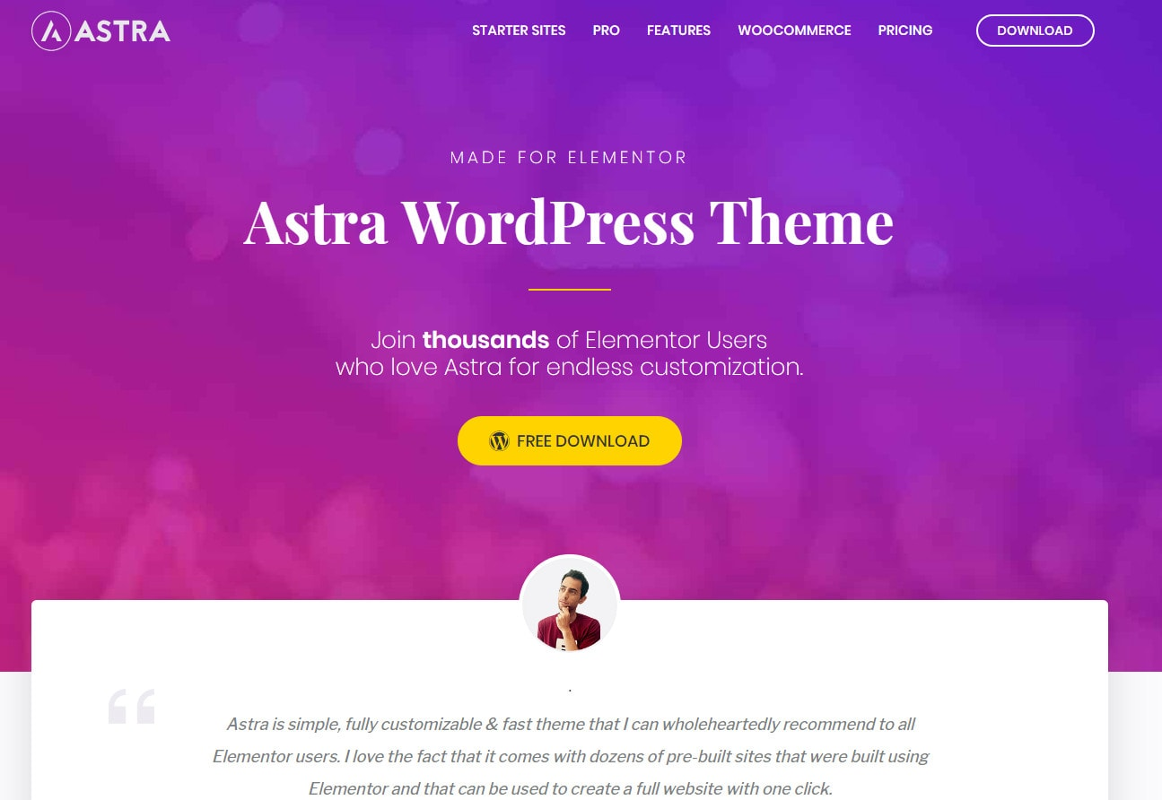 astra elementor themes